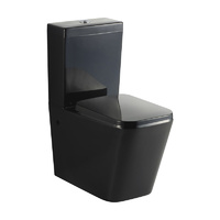 KDKB 003 Back to Wall Toilet Suite - Black